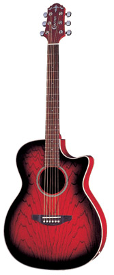 Crafter JTE 100CEQ/TR (W/SB-EG) - with bag